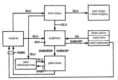 transmitery.jpg